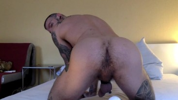 WELL BRED & CREAMPIED BY HORNY HUNK