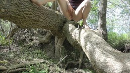Peeing From A Fallen Tree - Upskirt no Panties Pissing Girl