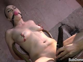 Humiliated euro slave nt punished and toyed
