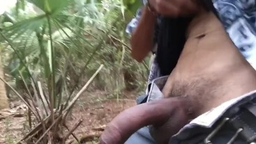 Quick Nut In The Woods