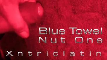 Blue Towel Nut One