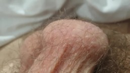 Hairy man with long pubes close-up in bed *comment if you liked*