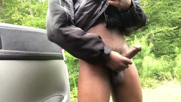 Public exhibitionist ( Roadside )