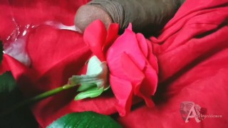 cumming on a rose cock tease