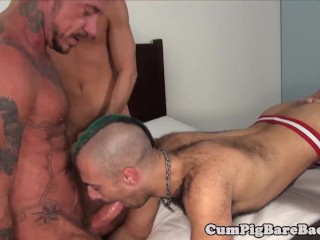 Bears screwing foursome...