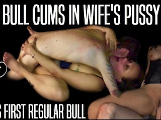 Wifes first regular bull cums in her pussy...