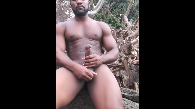 Nude on beach cocks - Black stallion on the beach jerking my cock virgin island style free up