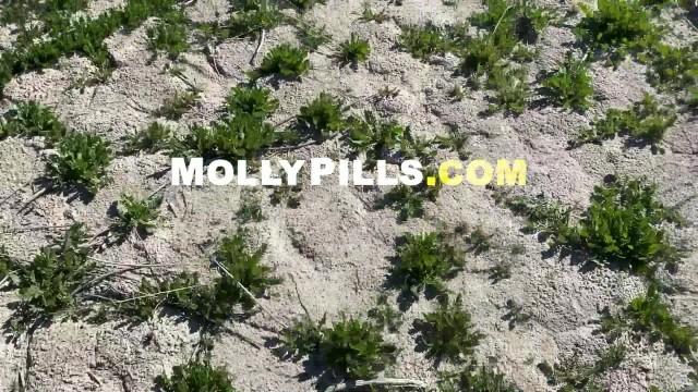 Amateur Adventure Porn - Molly Pills - Lakeside Fucking POV 23