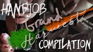 Handjob Compilation From GrandHarwest