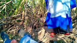 New indian desi village MMS outdoor sex Hindi audio