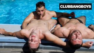 Gay Guys Surrendering their Cocks
