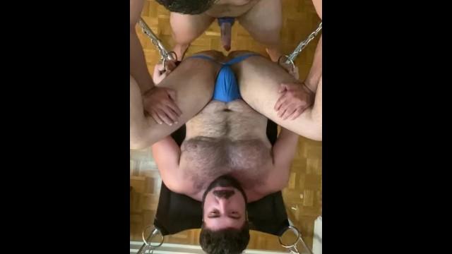 Rough Pounding Bear in Sling