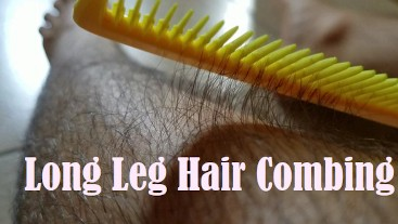Combing My Long Leg Hair With Close Ups