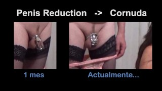 REDUCE Cuckold's cock size so that he is more Humiliated and Obedient in chastity FEMDOM