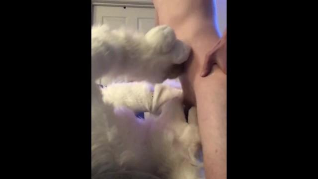 SaoirseMutt Throat-Fucked by a Stud 5