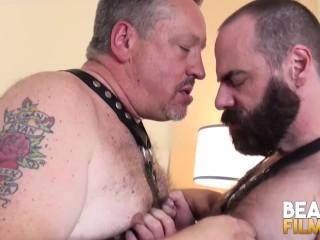 gay N197...