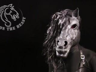 Shemale horse enjoying itself...