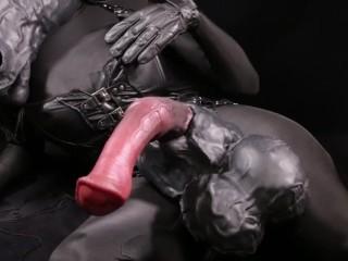 Masturbating anthro horse