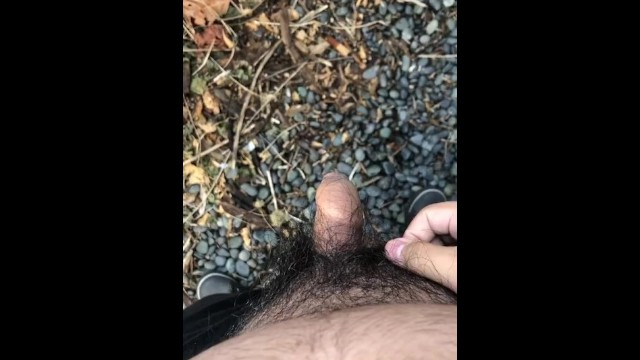 My little Phimosis Penis Erects