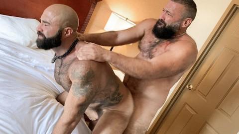 Sex hairy gay bear sex
