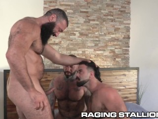 RagingStallion – Three Angry Bears Fuck The Hell Out Of Each Other!