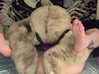 Getting Fucked By My Teddy Bear (OF Preview)