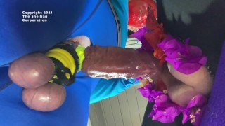 CBT for Ecstasy compilation 2 with tied balls and hammered cock