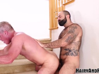 Hairyandraw hairy atlas grant breeds mature...