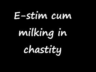 E-stim cum milking in chastity