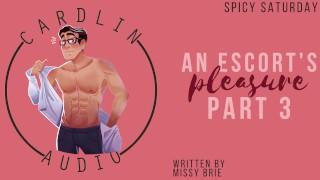 [M4F] An Escort's Pleasure Pt. 3 [Male Moaning] [Light BDSM] [MDom] [Male Escort]